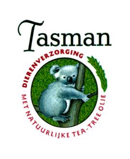 Tasman tea tree
